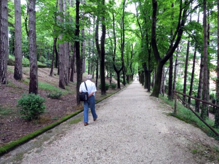 Giulio walks through his favorite park in Cagli.