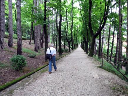 Giulio walks through his favorite park in Cagli.